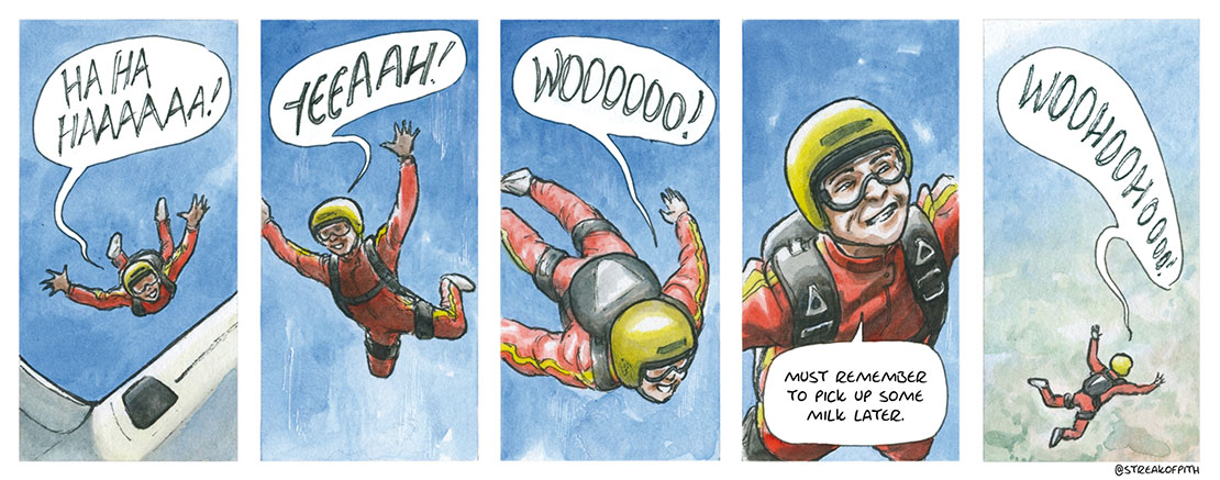 3rd February 2017 - Skydiver